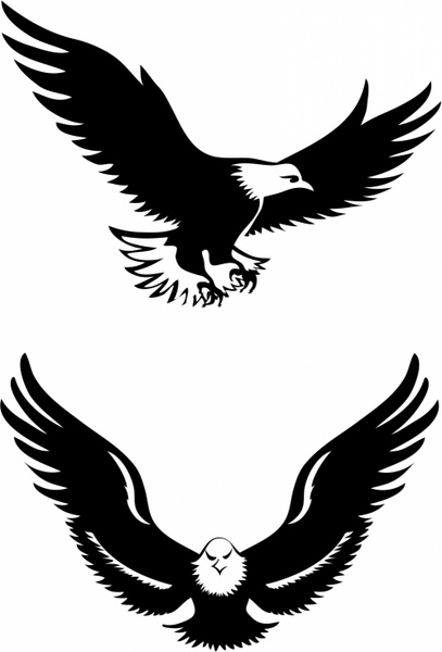 Flying eagles Free vector in Adobe Illustrator ai ( .AI ) format for.
