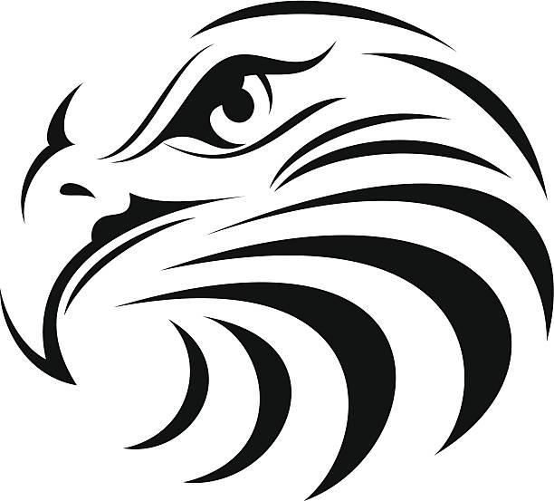 Best Eagle Head Illustrations, Royalty.