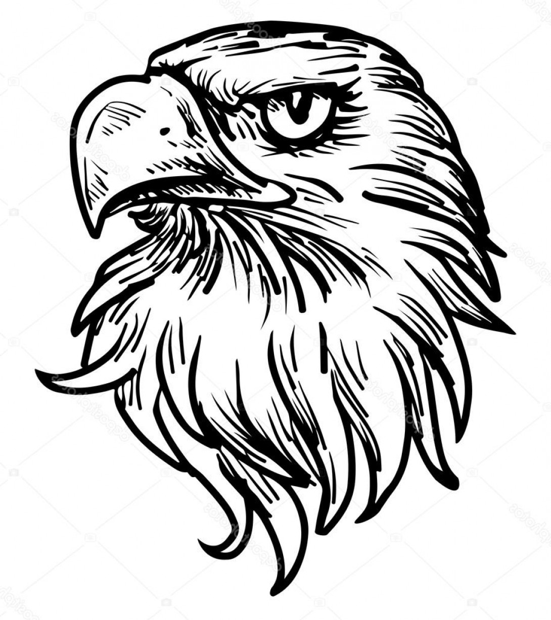 Stock Illustration Hand Drawn Eagle Head.