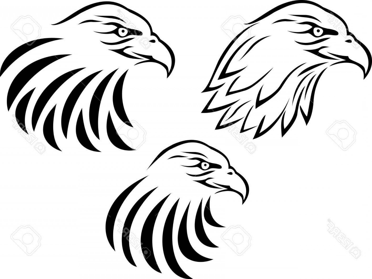 Eagle Head Clipart Black And White Vector.