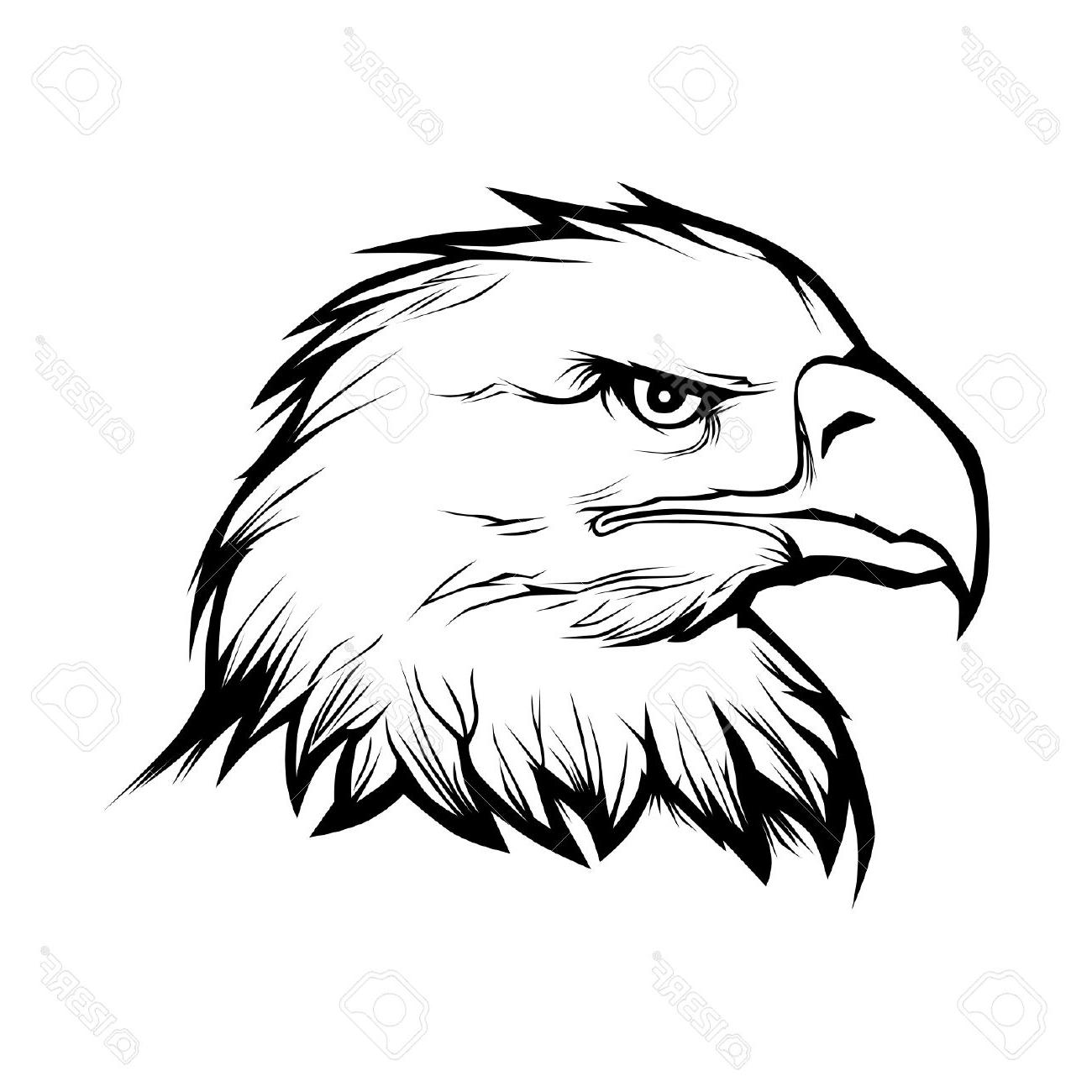 Eagle head clipart black and white 5 » Clipart Station.