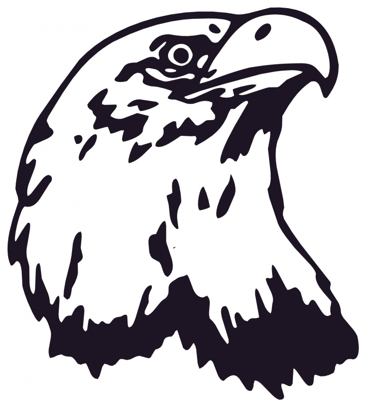 Free Eagle Head Images, Download Free Clip Art, Free Clip Art on.