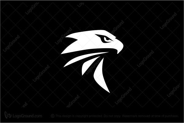 Exclusive Logo 121959, Eagle Head Logo.
