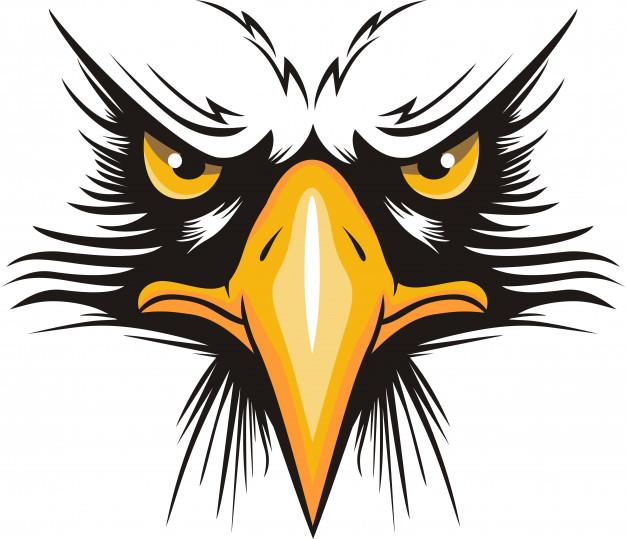 Eagle head logo Vector.