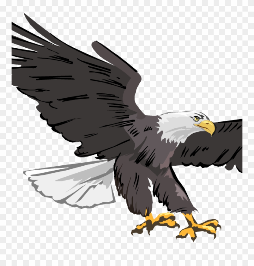 Free Clipart Of Eagles Free Clipart Of Eagles Free.
