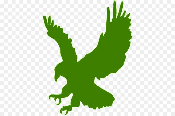 Clip art Bald eagle Silhouette Image.