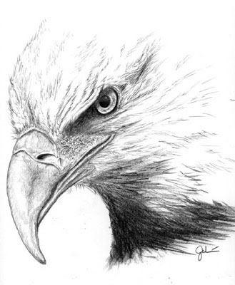 Native American Eagle Clipart.