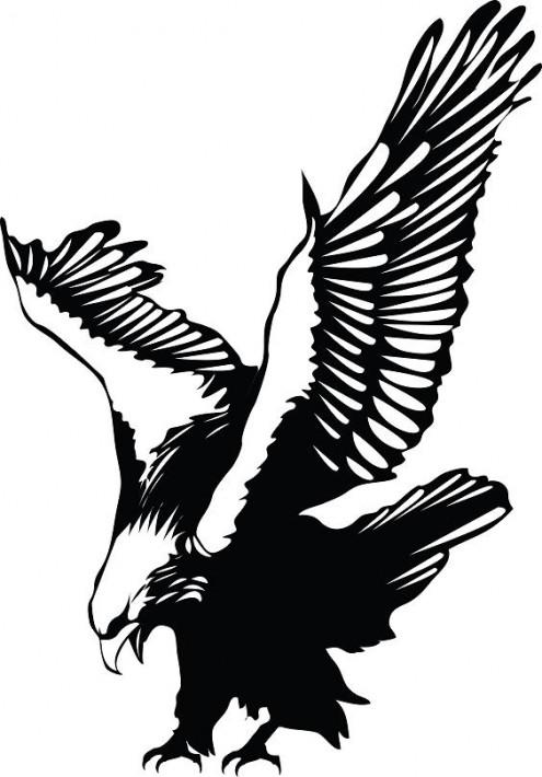 Eagle Tattoo Design.