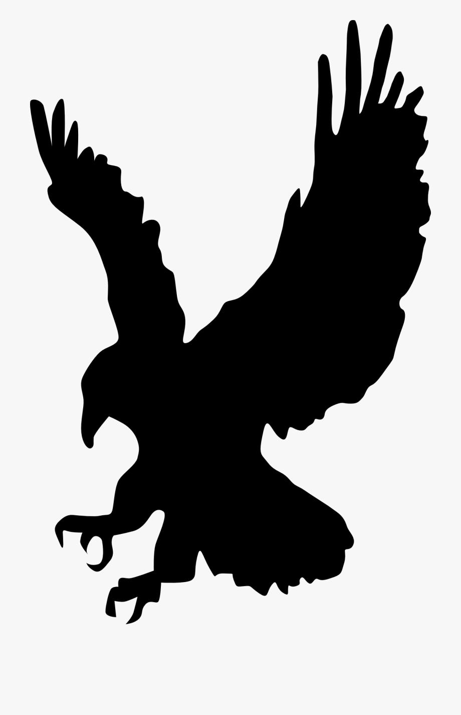 Hawk Eagle Bird Pray Landing Png Image.