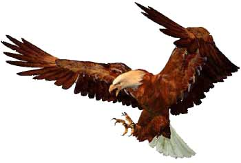 Eagle Landing Clipart.