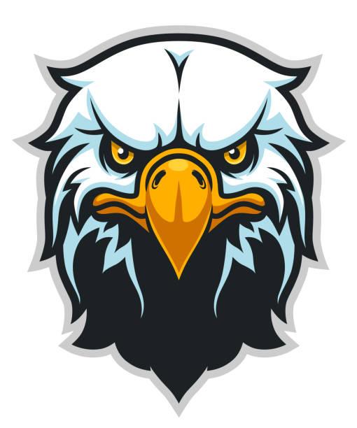 Best Eagle Mascot Illustrations, Royalty.