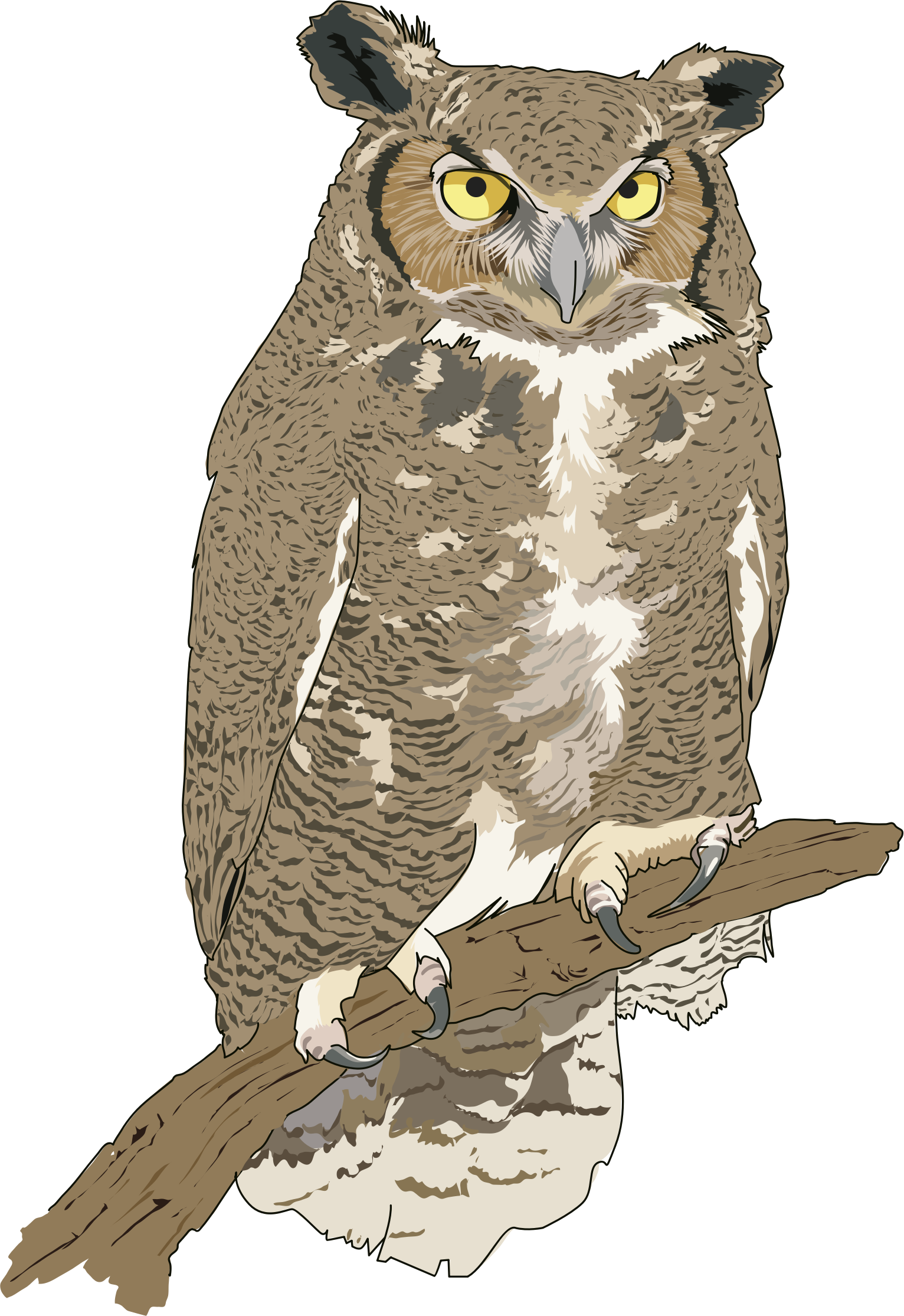 Eagle Owl Clipart 20 Free Cliparts Download Images On