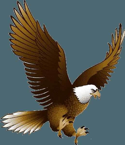 HQ Eagle PNG Transparent Eagle.PNG Images..