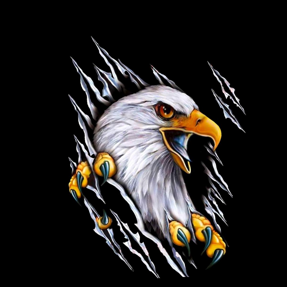 PNG Sector: Eagle Png Logo.