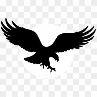 Free White Eagle PNG Images.