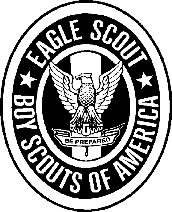 Eagle Scout Images In The Directory Transparent Png 2.