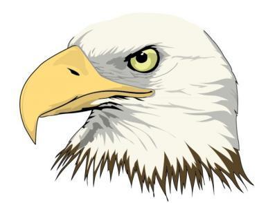 Lion Eagle Castle Czestochowa Coat Of Arms clip art Free Vector.