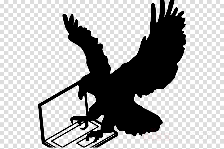 Bald Eagle, Eagle, Silhouette, transparent png image & clipart free.
