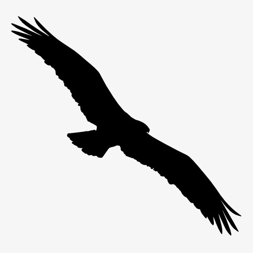 Eagle silhouette PNG clipart.