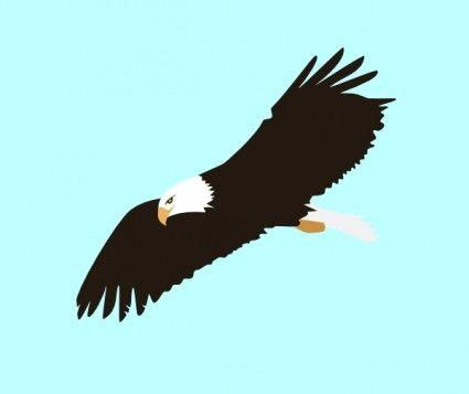 Soaring Eagle clip art.
