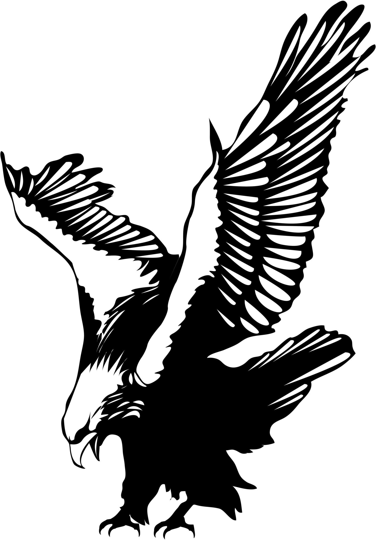 Free Eagle Vector, Download Free Clip Art, Free Clip Art on.