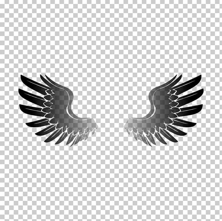 Eagle Wing PNG, Clipart, Beak, Bird, Bird Flight, Bird Of Prey.