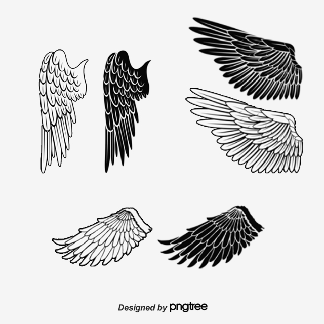 Eagle Wings Brush, Animal Brush, Ink, Black PNG Image and Clipart.