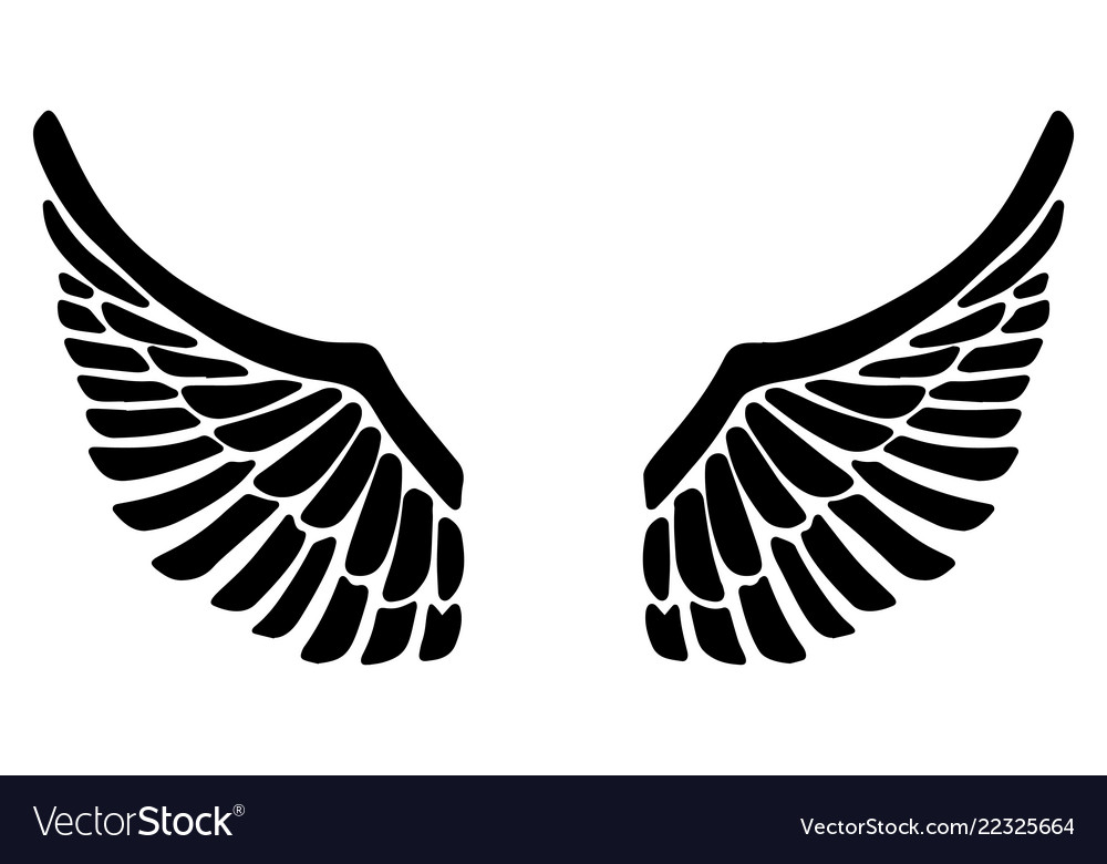 Hand drawn eagle wings isolated on white.