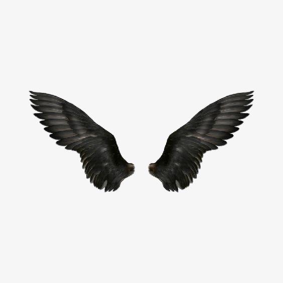 wing.