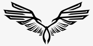 Eagle Wings PNG, Transparent Eagle Wings PNG Image Free Download.