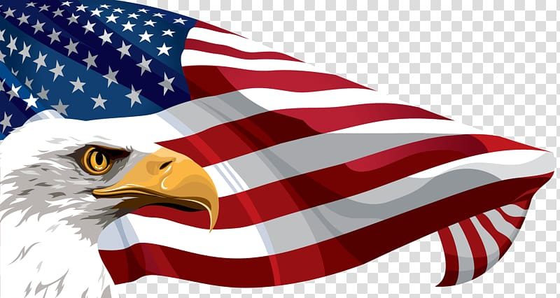 Flag of the United States , American Flag transparent background PNG.
