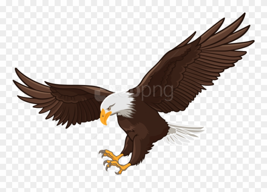 Free Png Download Eagle Clipart Png Photo Png Images.
