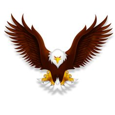Free PNG HD Of Eagles Transparent HD Of #256485.