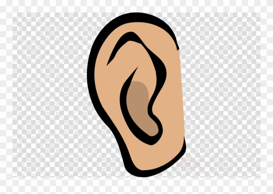 Ears Clipart Ear Clip Art.