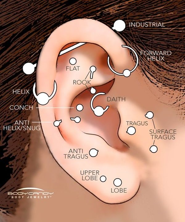 1000+ ideas about Types Of Ear Piercings on Pinterest.
