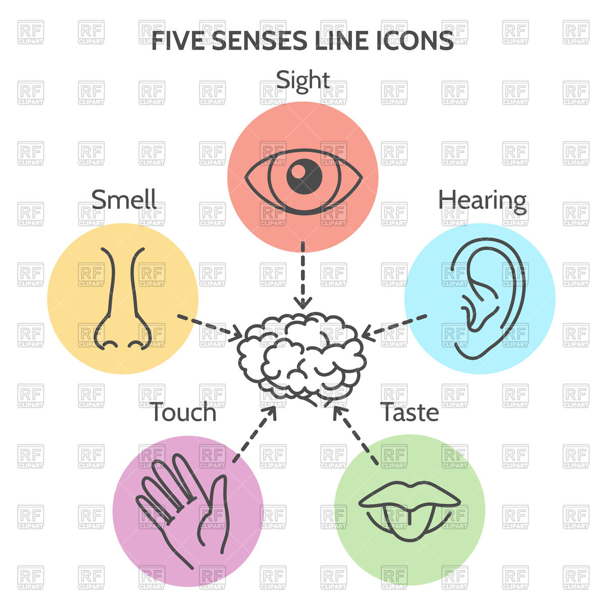 Five senses icon.