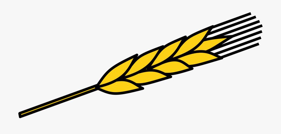 Ear Of Corn Clipart Clipartxtras.