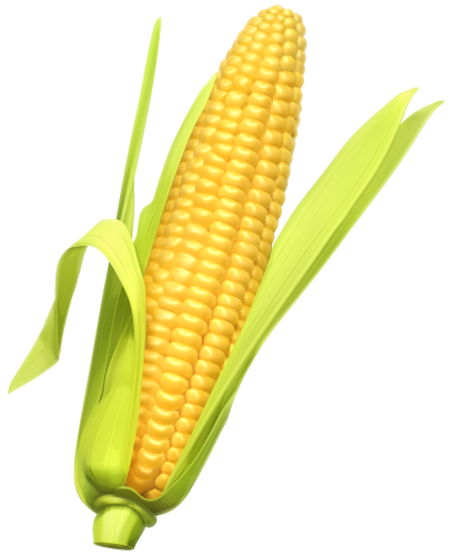Ear Of Corn Clipart Vector, Clipart, PSD.