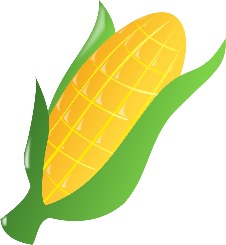 Corn Clipart Easy Draw Ear Of Corn Clipart.
