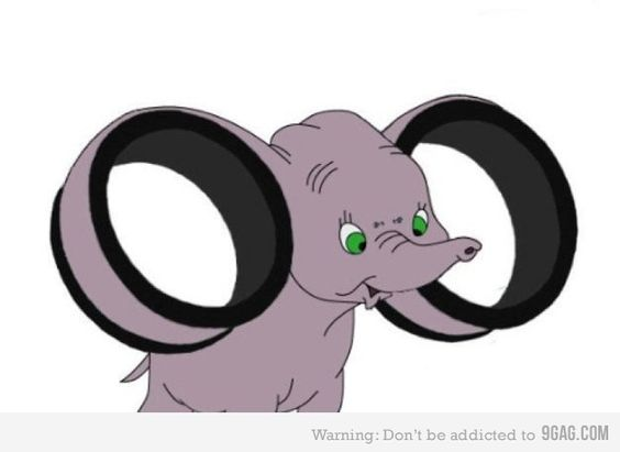 Stretched lobed Dumbo, what a cutie.
