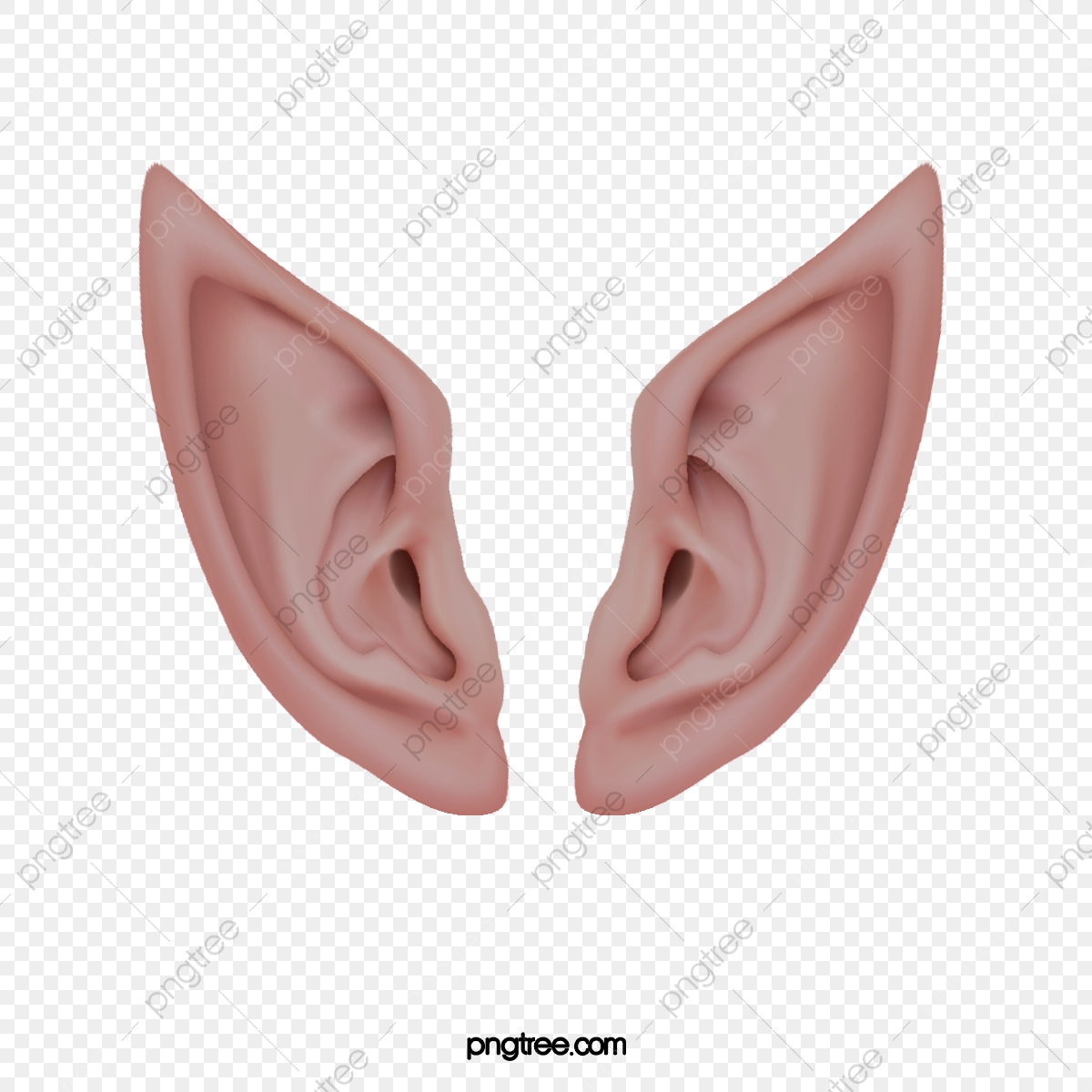 Elf Ears, Ear, Genius, Psd Layered Material PNG Transparent Clipart.