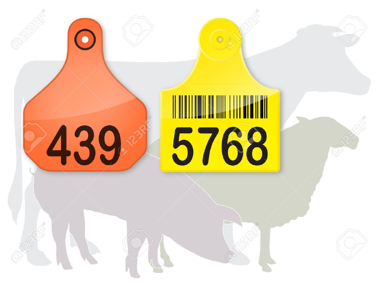 EarTag Royalty Free Cliparts, Vectors, And Stock Illustration.