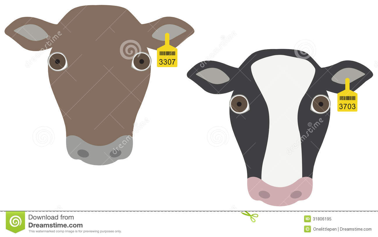 Tag Cow's Ear Stock Photos, Images, & Pictures.