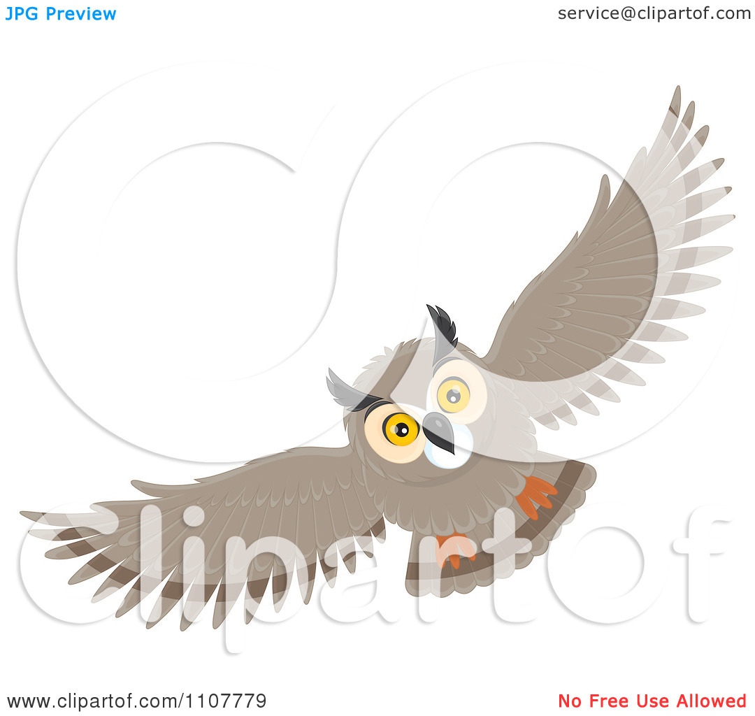 Clipart Long Eared Owl Flying.