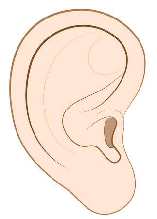 221 Ear Lobe Cliparts, Stock Vector And Royalty Free Ear Lobe.