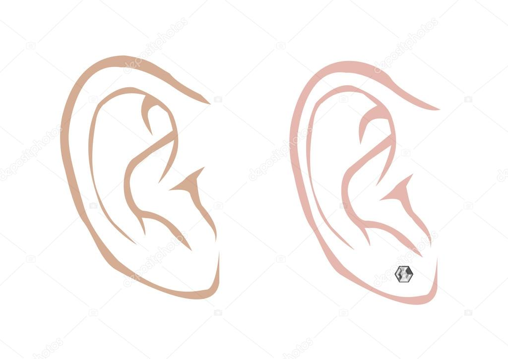 Clipart: eardrum.