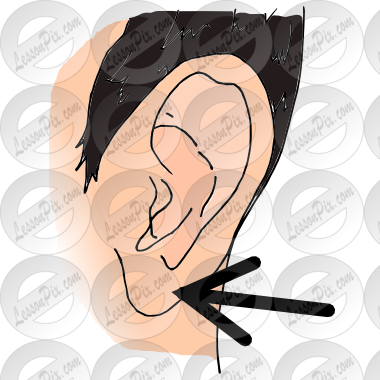Earlobe Picture for Classroom / Therapy Use.