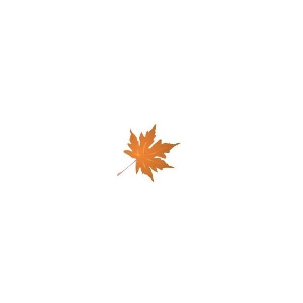 51 Autumn Clipart Clip Art Images, Food Clipart and Menu Graphics.