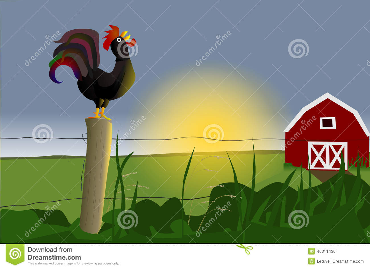 Early Morning Rooster Stock Illustration.