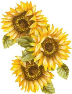 Pretty little digi scrap of a Late Summer/Early Autumn Sunflowers.